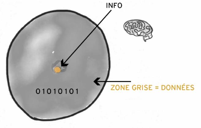 Légende : entre données et information, il y a gouffre trop souvent ignoré (dessin antimseum.com)