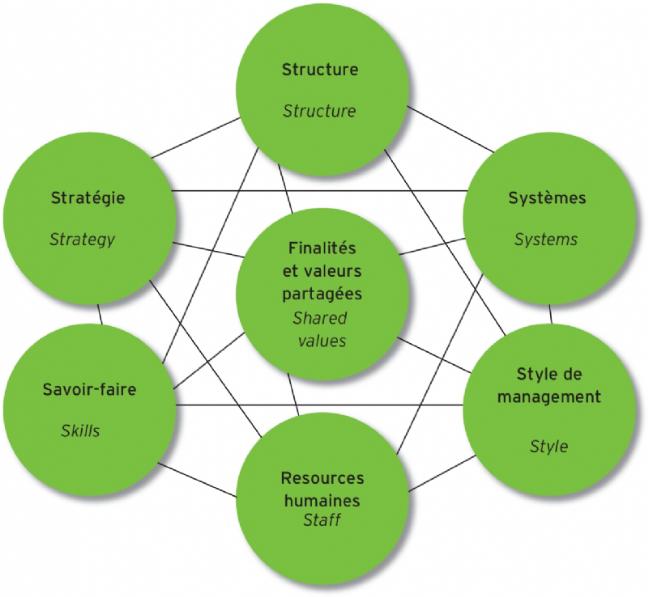 Le diagnostic par l'approche systémique