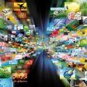 Drive : le très fragile équilibre de l'alimentaire en ligne | Dossier : Drive : quand grande distribution et e-commerce ...
