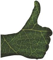 Adoptez «l'écolo attitude» pour faire des économies