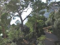 Le Château des Terrasses, superbe bâtisse avec vue sur la mer située à Cap-d'Ail, peut accueillir jusqu'à 200 personnes.