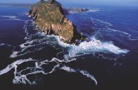 A une heure de la ville du Cap, le mythique Cap de Bonne-Espérance.