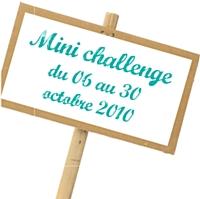 Mini challenge, maxi effet