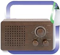 Socrimex aime le vintage... et le prouve avec cette radio en bois. Prix: 55,48 euros HT.