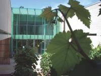 Le musée des Arts du Cognac
