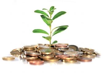 Financement: empruntez à vos associés!