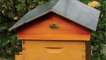 Entreprises et particuliers peuvent louer une ruche à l'année auprès d'Apiterra.