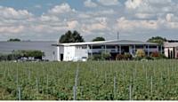 Plutôt qu'une ZAC, Duo Display a choisi de s'implanter au milieu des vignes autour de Montpellier. Un cadre de travail agréable pour les salariés.