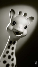 Sophie la girafe, star de Vulli, a été vendue à 816 000 exemplaires en France, l'an dernier, pour 830 000 naissances.