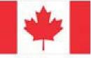 Marketing: au Canada, les bières Molson transforment les sous-bocks en arbres