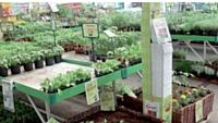 Les jardineries mettent en scène leurs points de vente pour dépayser leurs clients et développer leur goût de cultiver un jardin.