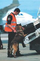La politique de sûreté menée par ADP, depuis les événements du World Trade Center, est représentatif du secteur. Entre 2001 et 2005, Aéroports de Paris a ainsi investi plus de 244 millions d'euros dans ce domaine.