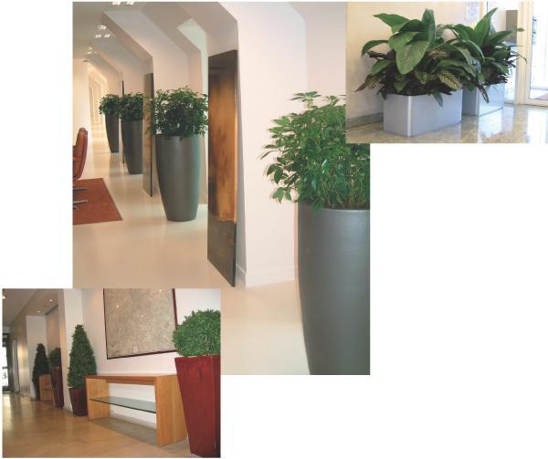 La plante artificielle s 39 invite au bureau for Plante artificielle bureau