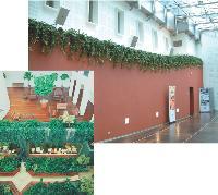 Les plantes artificielles trouvent facilement leur place dans les halls d'accueil des entreprises.