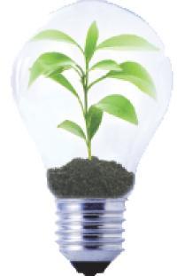 Acheteur d'énergie, un profil recherché