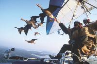 Christian Moullec, réalisateur du film Le peuple migrateur, installé à Saint-Simon dans le Cantal, propose des vols en formation avec les oiseaux sur un ULM biplace.