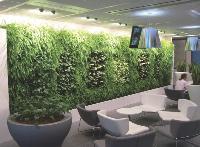 Les murs peuvent être équipés d'un réseau de gaines à goutteurs, connecté à une station de contrôle qui assure les apports en eau et en nutriment (ici, le mur végétal du siège social de Casino, à Saint-Etienne).
