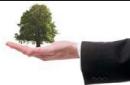 Les achats, une fonction-clé de l'écosystème