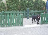 Des espaces réservés aux chiens, les canisites, permettent de garder les trottoirs propres