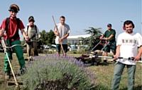 L'Esat Les Pierres Fauves, à Vitrolles (Bouches-du-Rhône), propose aux entreprises d'entretenir leurs espaces verts.