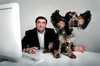 Yves Riesel veut faire de Qobuz.com une véritable marque.