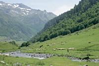 Philippe Nicard consacre une partie de ses loisirs à la randonnée en Haute-Savoie.