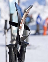 Le ski fait partie de ses hobbies, avec le tennis, la voile et la natation.