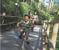 Depuis 40 ans, Center Parcs répond à des attentes de partage, d'expérience et d'environnement.