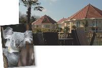 Les courts séjours sont de plus en plus prisés. Le zoo de Beauval a donc ouvert un hôtel au sein du domaine. L'initiative porte déjà ses fruits.