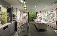 L'intérieur du magasin mixe l'esprit champêtre des jardineries et l'atelier d'artiste, avec des toiles posées en haut des étagères.