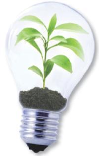 71 % des Français interrogés disent faire des efforts pour protéger l'environnement.