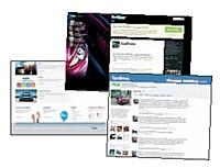 Ford a investi la majorité de son budget marketing dans une campagne basée sur l'utilusation des réseaux sociaux (YouTube, Twitter et Facebook).