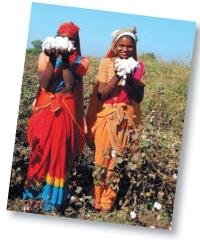 S'engager, c'est aussi développer des filières dans les pays émergents avec des petits producteurs. Ici, Ekyog, en Inde.