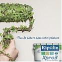 Ripolin s'engage en faveur de l'environnement