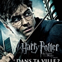 Harry Potter crée du buzz sur le Net