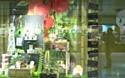 Nature & Découvertes lauréat 2012 des Janus du Commerce