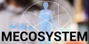 [Billet] Mecosystem : l'homme au centre, de tout