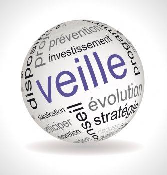 Veille strat�gique : le groupe SVP lance SVP Intelligence