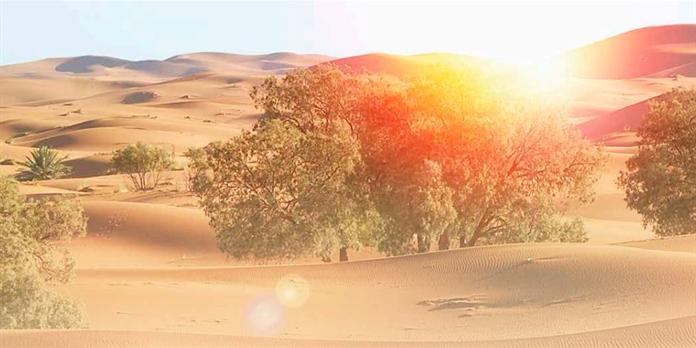Maroc : le premier village solaire autonome s'éveille