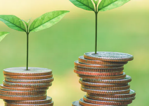 Retour sur l'expérimentation du ' budget vert ' en France