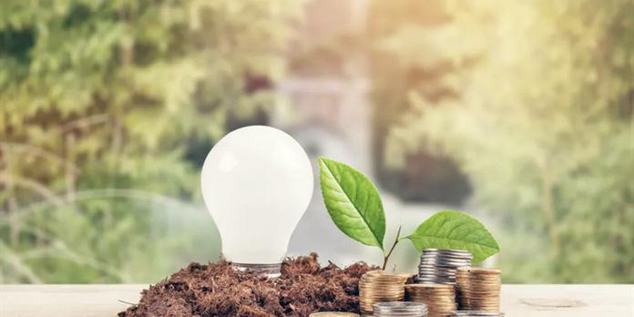 Performance financière : être vert est-il payant en temps de crise ?