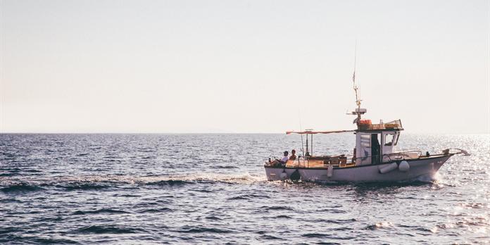 Le MSC accélère ses actions pour une pêche durable