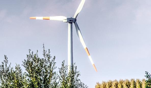 Appel à l'action et au soutien des entrepreneurs pour la relance verte