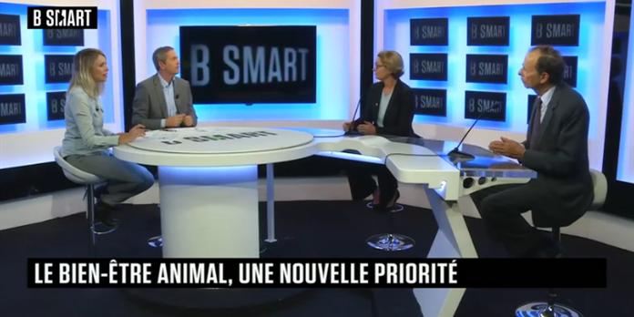 Smart Impact 24 septembre : GRDF, le bien-être animal, On the Wilde Side