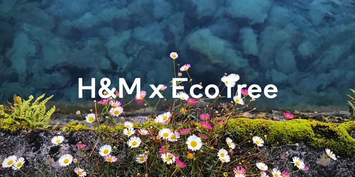 H&M s'engage pour le climat et la biodiversité