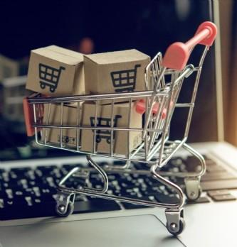 """Comment Biolane (groupe Havea) a dopé ses ventes de 40 % sur <span class=""""highlight"""">Amazon</span> ?"""