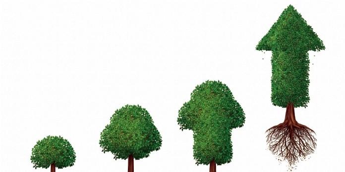 Epsa mise sur une croissance durable