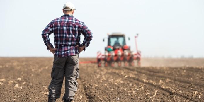 L'agriculture régénératrice séduit de plus en plus d'agriculteurs