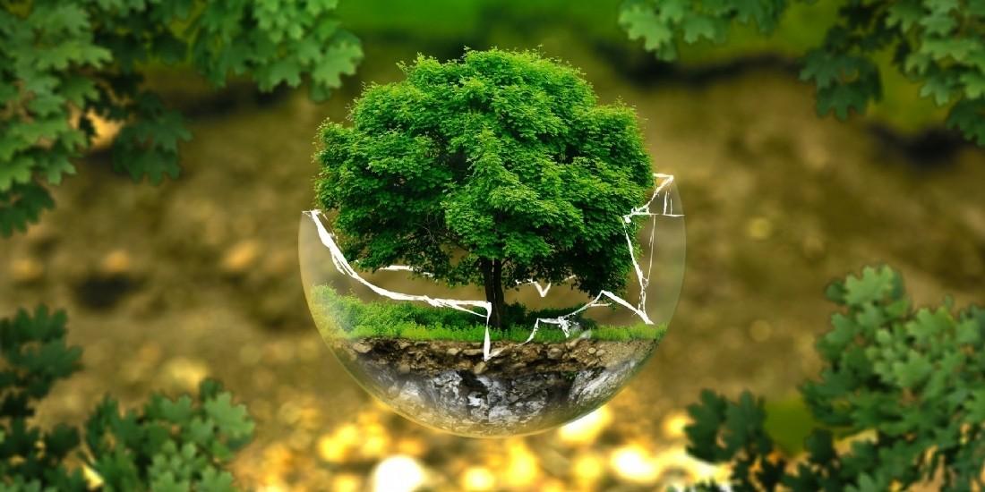 [Tribune] Marketing durable : un oxymore ?