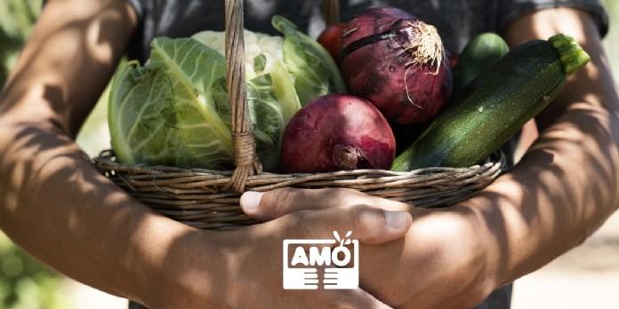 AMO : future plateforme citoyenne du circuit-court